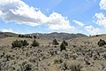 Jumbo Grade Trail - panoramio (10).jpg