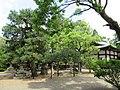 Kamigoryo-jinja 009.jpg