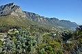 Kapské město, 12 apoštolů - Jihoafrická republika - panoramio.jpg