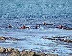 Kayaks in Westlake Bay.jpg
