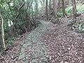 Kiiji Cobblestones 01.jpg