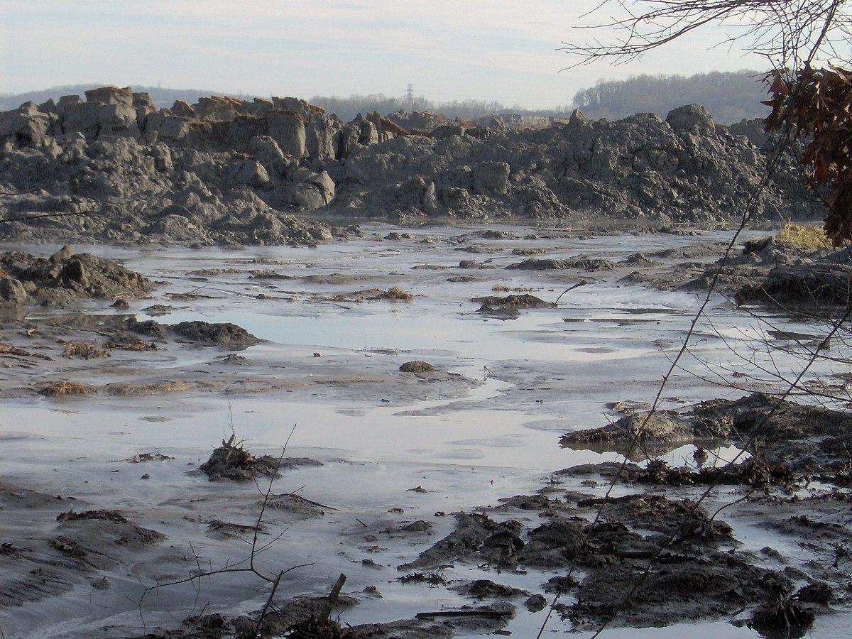 Ash From Coal ~ Toxic heavy metal wikipedia