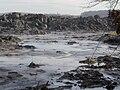 Kingston-plant-spill-swanpond-tn2.jpg