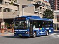 Km Kanko Odaiba Rainbow Bus Rainbow II.jpg