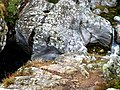 Korsika – Gorges du Prunelli - panoramio (3).jpg
