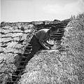 Krovec Slavko Štrumbelj, Mali Lipovec, pokriva streho na štali (hlevu) doma 1957 (4).jpg
