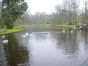 Bank (geography) - A man-made lake in Keukenhof with grass banks