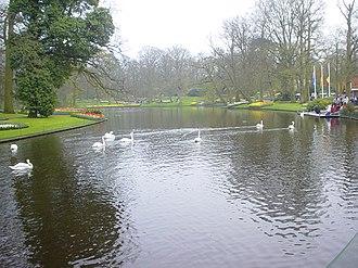 Bank (geography) - A man-made lake in Keukenhof with grass banks
