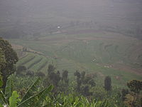 Kumbur wikipedia for What does terrace farming mean