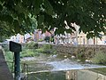 L'Albarine à Saint-Rambert-en-Bugey (septembre 2019), 1.jpg
