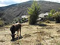 La Vereda - Guadalajara - Spain - panoramio (1).jpg
