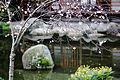 Lac, jardin japonais, Toulouse.JPG