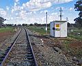 Lake Cargelligo railway line near Temora.jpg