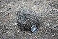 Laki volcanic bomb (2).jpg