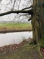 Landgoed Dickninge Drenthe Netherlands January 2021 18 43 23 451000.jpeg