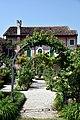 Le rose del municipio - Sesto al Reghena.jpg