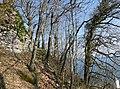 LigerzSchernelz FestiCastleRuins SouthSideOverlookingChurch RomanDeckert06032021.jpg