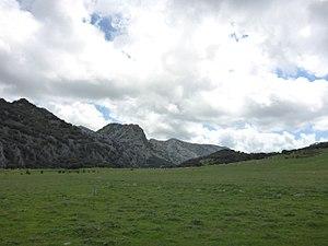 Llanos del Republicano - P1230181.jpg