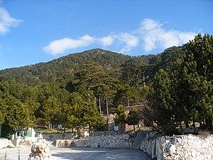 Parku Kombëtar i Llogarasë  300px-Llogara_pass