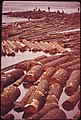 Log Raft on the Willamette River at Oregon City 04-1973 (4272306258).jpg