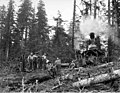 Logging crew and donkey engine, Wynooche Timber Company, near Montesano, ca 1921 (KINSEY 1593).jpeg