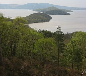 Islands in Loch Lomond. Looking south west fro...