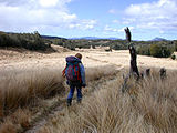 Lonehiker Tablelands New Zealand.jpg