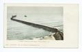 Longest Wharf in the World, Santa Monica, Calif (NYPL b12647398-62319).tiff