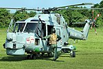 Lynx - Fly Navy Day 2016 (27318635060).jpg