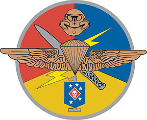 United States Marine Corps Special Operations Capable Forces - Marine Detachment One, or MarDet1
