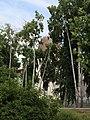 MW, 29.06.2018 , Hlonda, temple through trees.jpg