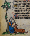Maastricht Book of Hours, BL Stowe MS17 f090v (detail).png