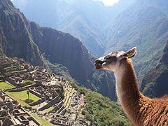 Machu Picchu 25.jpg
