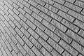 Madelene Lindholm linjer.jpg