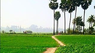 Kancha, Bihar - WikiMili, The Free Encyclopedia