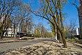 Maly Fontan, Odessa, Odessa Oblast, Ukraine - panoramio (6).jpg