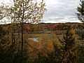 Manistee River in Autumn 2012 - panoramio.jpg