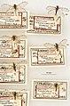 Mantispa myrapetrella (10.3897-zookeys.823.30231) Figure 61.jpg