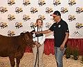 Maryland State Fair - 48624522723.jpg