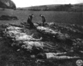 Mass grave Germany 1945, Hirzenhain 3.png