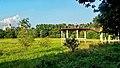 Md saiful amin kazal̠botanical garden dhaka.jpg
