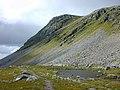 Meall nan Ceapraichean - geograph.org.uk - 488693.jpg
