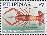 Metanephrops neptunus 2009 stamp of the Philippines.jpg
