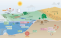 Microorganisms and climate change.png