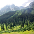 Minimarg Mountains.png