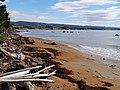 Moeraki Coast - 2013.04 - panoramio.jpg