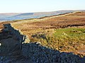 Moorland, Greencastle - geograph.org.uk - 639098.jpg