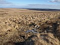Moorland below Watern Tor - geograph.org.uk - 1711848.jpg