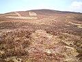 Moorland management for grouse - geograph.org.uk - 1265571.jpg