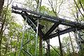 Morris Arboretum - DSC00163.JPG